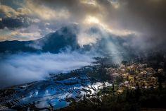 Morning Light #duoyishu #riceterraces #hani #yunnan #china #light #clouds #travel #photo #photography #place