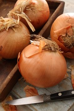 When it comes to onions, we are focused on quality! And we have mandatory state and federal inspections to back it up! Onions, Things To Come, Pumpkin, Vegetables, Country, Usa, Food, Federal, Rural Area