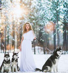 siberian wedding husky dogs and princess bride. Domino, Kira and Mia :)