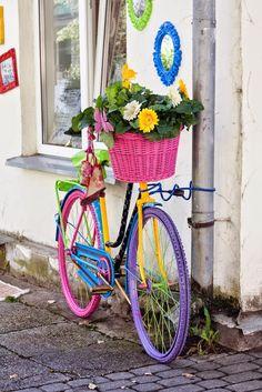 a bike & a basket