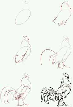 Exciting Learn To Draw Animals Ideas. Exquisite Learn To Draw Animals Ideas. Drawing Lessons, Drawing Techniques, Drawing Tips, Drawing Sketches, Art Lessons, Painting & Drawing, Sketching, Drawing Ideas, Bird Drawings