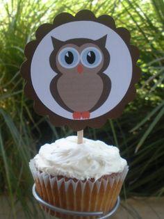 owl theme