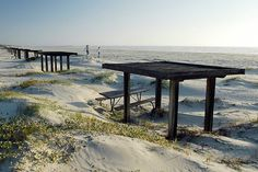 Mustang Island State Park offers visitors access to 5 miles of shoreline fronting the Gulf of Mexico. Camping, kayaking, fishing, surfing, swimming, birding and beach combing are all popular activities. The Mustang Island area is renowned for the number of sand dollars found along the tide line.