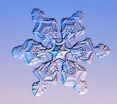 "Real snowflake (Cal Tech) + let students explore the beauty of symmetry on iPad: ""Snowflake Station"" iPad app game: https://itunes.apple.com/us/app/snowflake-station/id496808131?mt=8ign-mpt=uo%3D4"