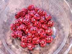 Ladybug M & Ms, made with red M & Ms and a black food marker