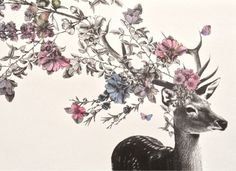 pretty flowers Sketch floral deer antlers