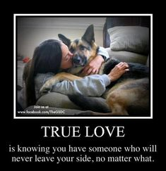 Wicked Training Your German Shepherd Dog Ideas. Mind Blowing Training Your German Shepherd Dog Ideas. I Love Dogs, Puppy Love, Cute Dogs, Animals Beautiful, Beautiful Dogs, Cute Animals, Dog Quotes, Animal Quotes, Amor Animal