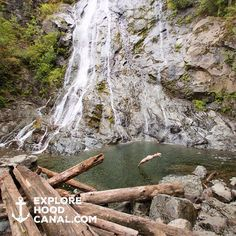 Dive in! #rockybrookfalls #wildsideWA #hoodcanal #explorehoodcanal #exploremore #waterfallswim #divein #horsetailfalls #olympicpeninsula #love #upperleftusa #pnw #Washington