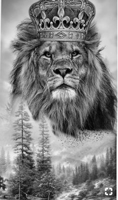 48 Best Lion Tattoo With Crown Images In 2019 Body Art Tattoos