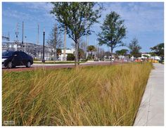 Kissimmee Lakefront Park.  Street stormwater runoff treatment chamber