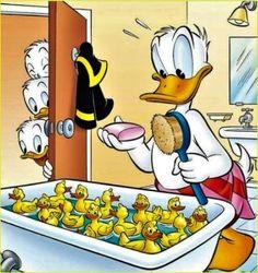 Disney's Donald & Friends:) Duck Cartoon, Mickey Mouse Cartoon, Mickey Mouse And Friends, Disney Duck, Disney Mickey, Disney Art, Pato Donald Y Daisy, Donald Duck, Classic Cartoon Characters