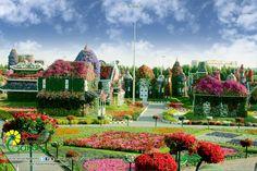 Уникальный цветочный парк Dubai Miracle Garden раскинулся на территории 6,7 га в Дубае. Здесь высажено порядка 45 видов разных видов цветов. Большинство из них было специально завезено в Дубай, чтобы создателям Чудо-сада удалось реализовать свой проект.