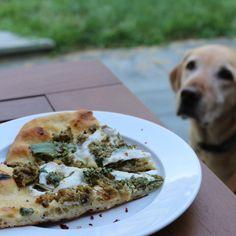 Clam Pizza