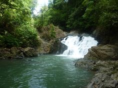 Swimming here in Chagres National Park