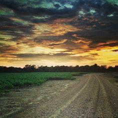 Mississippi Delta Beautiful