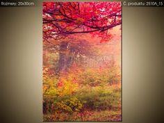 Tlačený obraz Jesenná príroda 2510A_1S