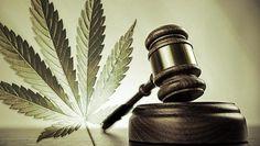Drug Offense Lawyers St Joseph