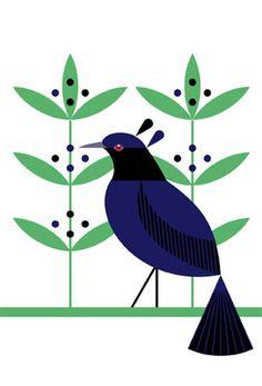 scott partridge - Bird of Paradise art