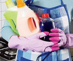 Manual da casa limpa | Casa | Itmãe