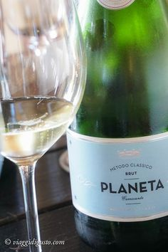 Wine tasting Planeta Winery, Sicily