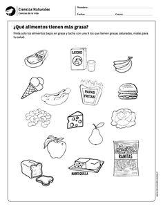 ¿Qué alimentos tienen más grasa?