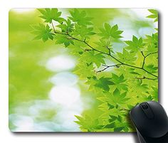 Comfortable Handle Mouse Pad Printed On Branch With Green Leaves 25 Mouse Pad http://www.amazon.com/dp/B00MJO91IM/ref=cm_sw_r_pi_dp_UsA5tb17Q01YN