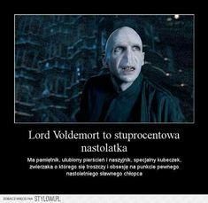Why Voldemort is like a teenage girl Harry Potter Mems, Harry Potter Film, Harry Potter Facts, Harry Potter Fandom, Jarry Potter, Harry Draco, English Jokes, Weekend Humor, Johny Depp