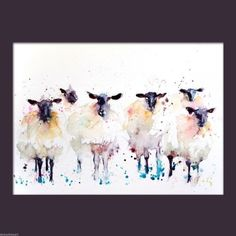 Jen Buckley Art - JEN BUCKLEY signed LIMITED EDITON PRINT of my original 6 Black faced Suffolk SHEEP