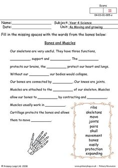 PrimaryLeap.co.uk - Bones and muscles Worksheet