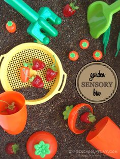 Garden Sensory Bin. Carrots, strawberries, and colored rice for mulch. So much fun for preschoolers.