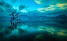 Wanaka-tó, Új-Zéland, tó, fa, felhő, tükröződés