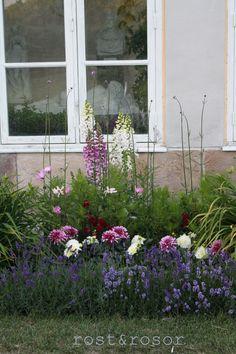 Gardenflowers.