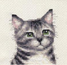 Silver Tabby kitten portrait by Fido Stitch Studio