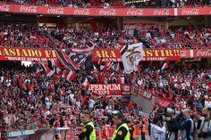 (6) SL Benfica (@SLBenfica) | Twitter