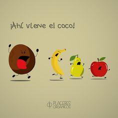 ¡Ahí viene el coco! #Humor #Actitud www.placeresorganicos.com