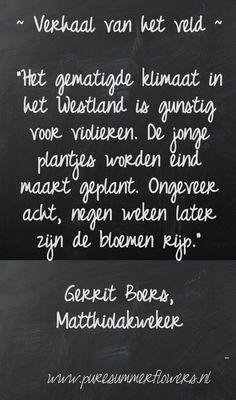 Kort verhaal van het veld. Quote Matthiolakweker.    This quote courtesy of @Pinstamatic (http://pinstamatic.com)