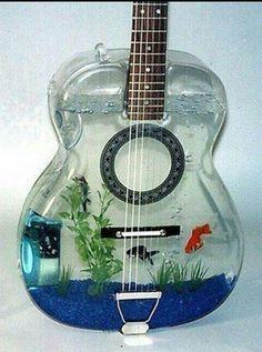 fish tank guitarhttp://www.usedinstrumentsmichigan.com/