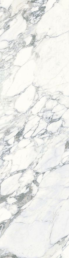 Porcelain Tile | Marble Look Plane Arabescato Vena http://www.stonepeakceramics.com/products.php