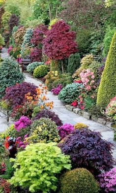 Lovely border landscaping. Beautiful mixtures of plants.