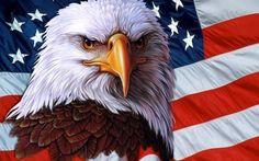American Flag Wallpaper Images #54dm ~ EasyOffer.net