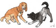 Orihime & Tatsuki as dogs
