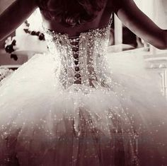 I must have a corset tutu wedding gown and it light up - Even better! Wedding Dress 2013, Lace Wedding Dress, Wedding Gowns, Wedding Corset, Bridal Corset, Bridal Gowns, Ballet Wedding, Snow Wedding, Dream Wedding