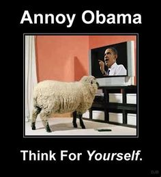 If you really want to continue annoying Obama, then continue watching Fox News, and continue listening to talk show radio. He can't seem to stress the issue enough; that he doesn't like the fact that people are becoming well informed. The more people know, the more they ask questions. I can see how that gets annoying.