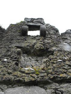 Clonony Castle, Co. Offaly.