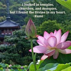 Rumi  best place to worship...  www.facebook.com/loveswish