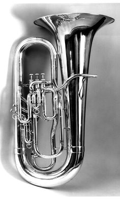 i have always wanted to learn tuba! maybe my friend will help me...