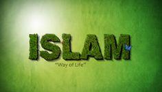 Penulis sangat bersyukur dapat menyebarluaskan kembali pembasan mengenai aliran-aliran teologi dalam islam. Tentu pembaca sudah tidak asing dengan kata teologi tersebut ya, artikel ini khusus penulis referensikan kepada umat muslim di dunia khususnya di Negara Indonesia ini. Untuk itu marilah kita mulai membaca dengan seksama aliran teologi dalam islam ALIRAN TEOLOGI DALAM ISLAM Aliran Syiah