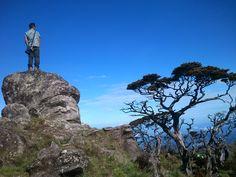 Bawakaraeng Mt.