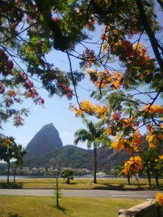 Aterro do Flamengo, Rio de Janeiro