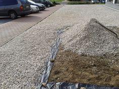 Racjonalne Oszczędzanie: Żwir zamiast trawnika.